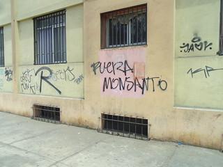 'FUERA MONSANTO'(151225-2503)