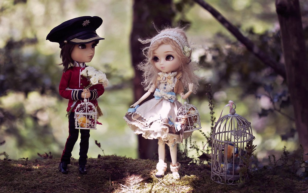 Dolls Toys Girls Bird Cages Hd Wallpaper Firas Ali Flickr