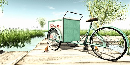 A Bicycle's Life - Summer Day | by Willow Llewellyn