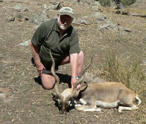 Black Buck Hunting