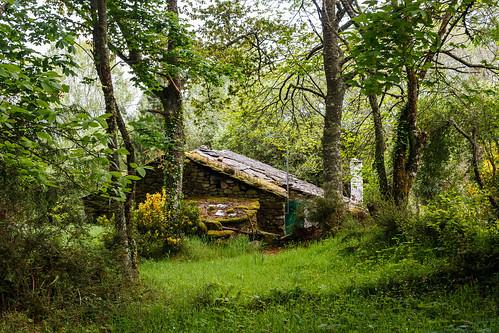 Camino primitivo la casita del bosque proximidades de - Casitas del bosque ...