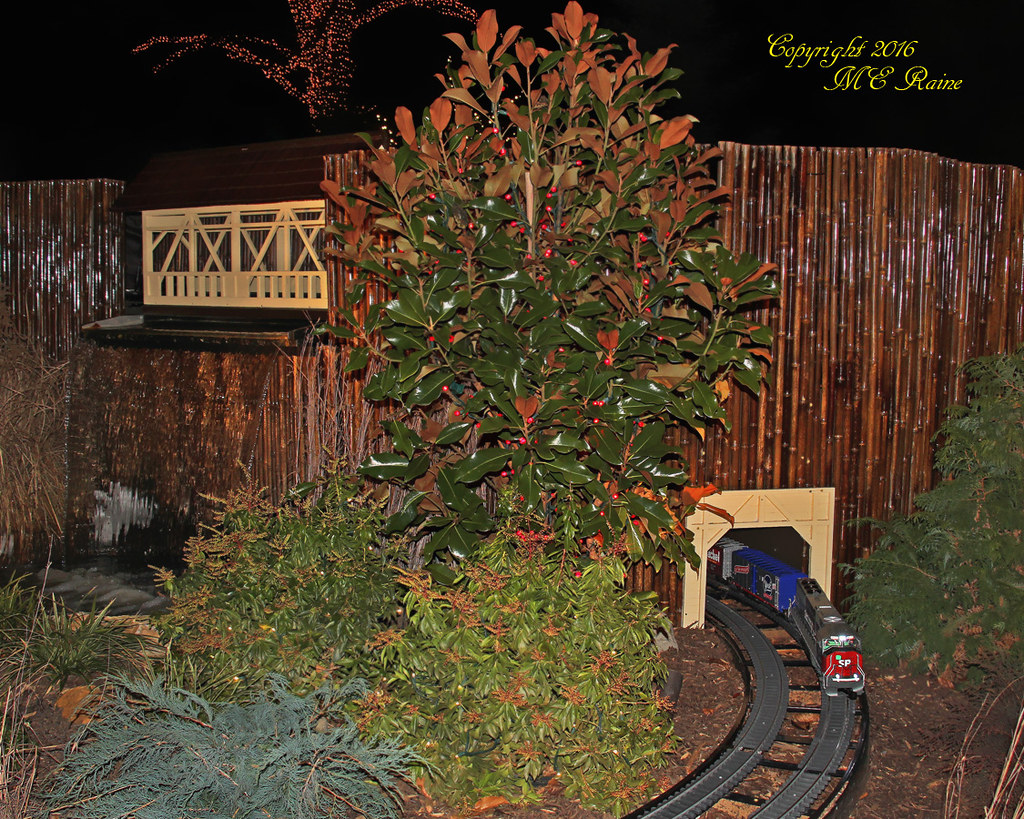 2015 Longwood Christmas: Outdoor GARDEN RAILWAY (2 of 3) a… | Flickr