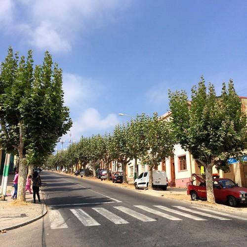 Avenida Matta