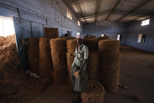 Coconut coir production | by peletiah