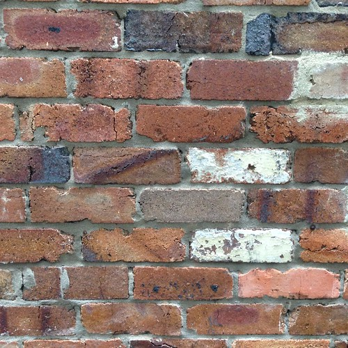 Day 29: just another brick in the wall | by robynejay