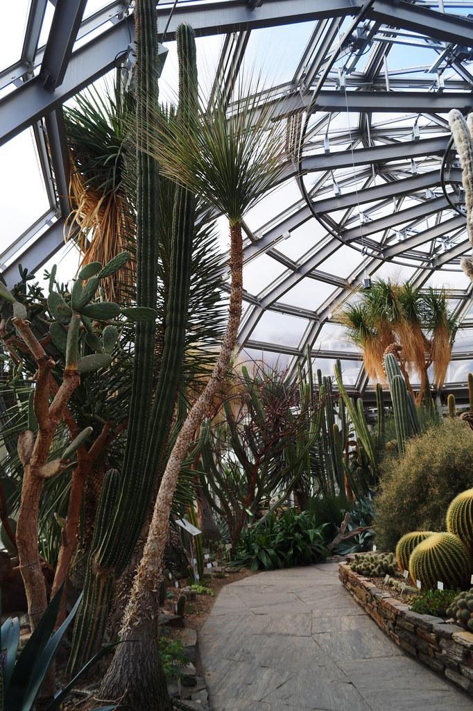 Botanischer Garten Berlin Dahlem Gewächshäuser Haus I Ka Flickr
