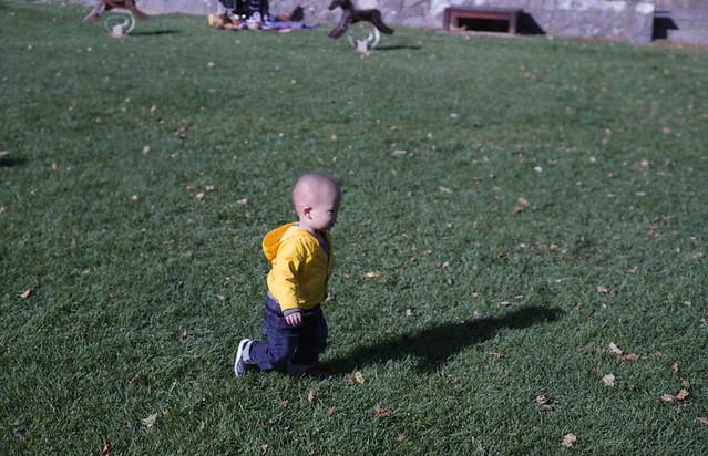 公園の芝生で走る子