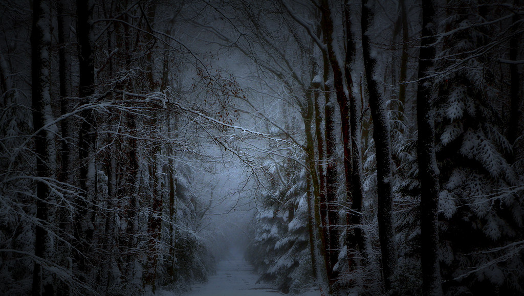 By Patthom974 Darkness Snowy Forest Road