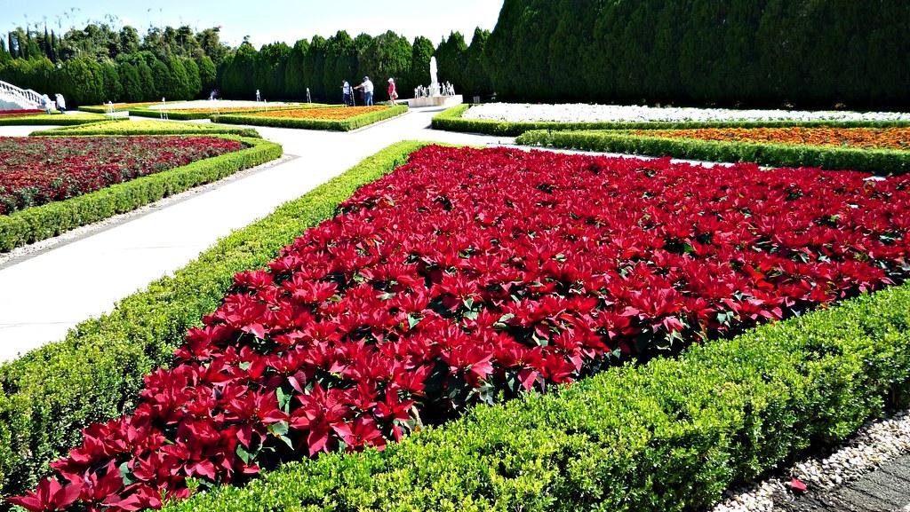 Jardines De Mexico Jojutla Morelos P1130722p Gtercero Flickr