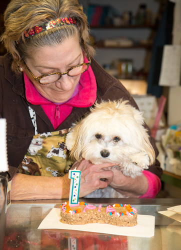 Joanne Elliott of Matilda's Dog Bakery with a special treat for Pip!! | by Laura Erickson