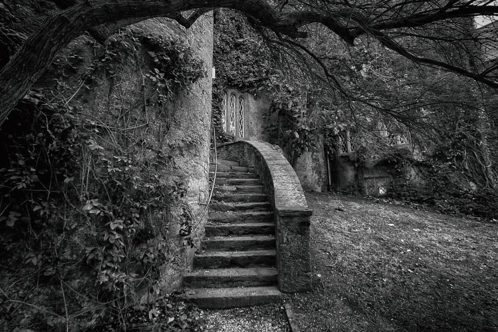 ... Secret Stairs | By Tony Kav