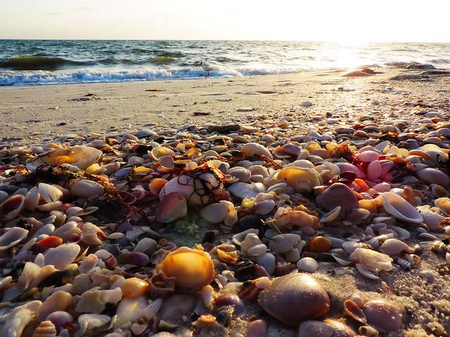 Barefoot Beach, Florida, USA