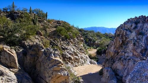 Honey Bee Canyon Trail