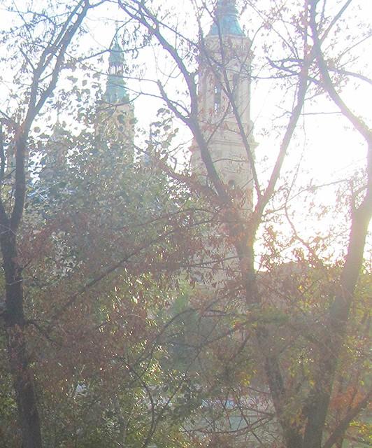 Torres del Ebro y ramas
