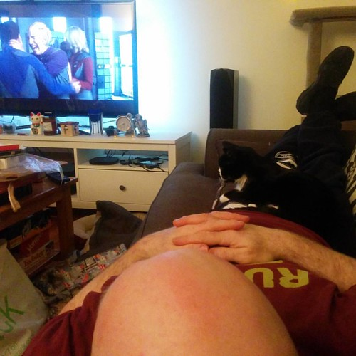 Pizza, cat-cuddling, and Galaxy Quest in honor of #alanrickman. | by domesticat