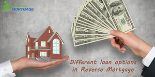 Different Loan Options in Reverse Mortgage - Z Reverse Mortgage