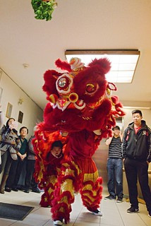 Name: jing-wo-lion-dance-056-20160220 | by goldenjadephoto