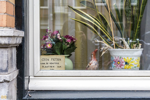 089 amsterdam window 11 | by Eva Blue