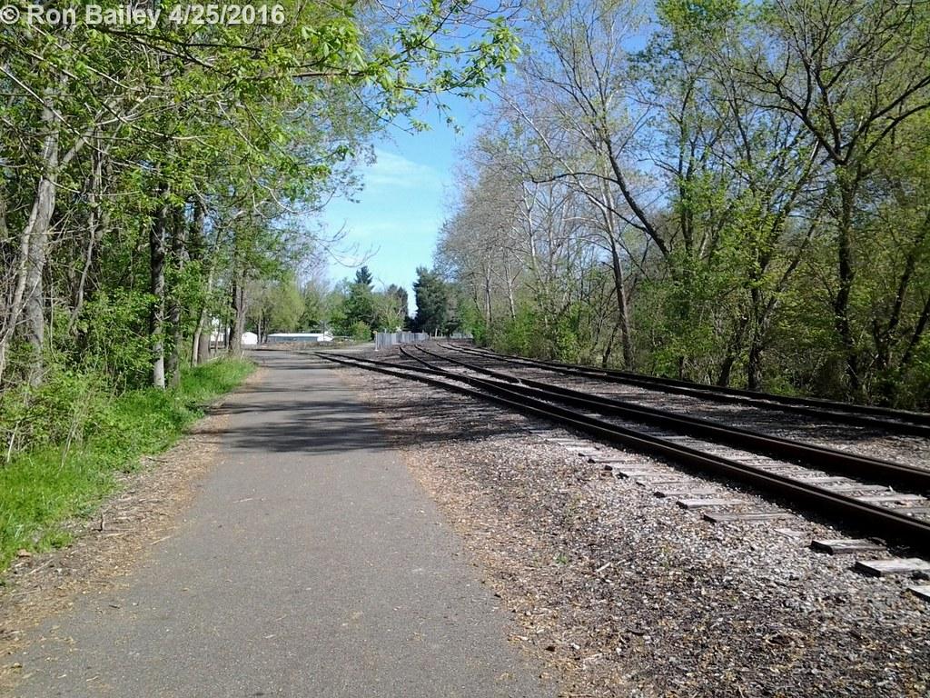 Bikepath Walk 4-24-16 50