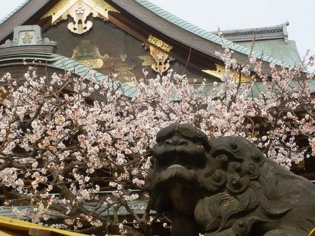 Yushima Tenjin Shrine, Yushima, TOKYO