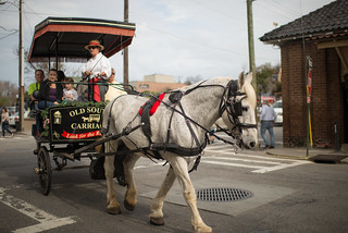 Old South Carriage Ride | by goingslowly