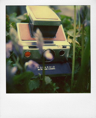Polaroid SX70 in the spring | by @necDOT