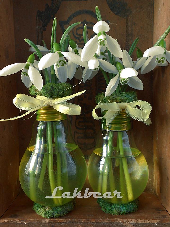 Lightbulb Vase These Little Light Bulb Vases Are As Adorab Flickr