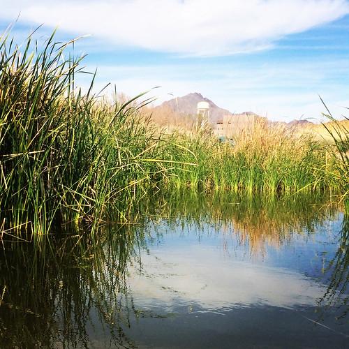 Clark County Wetlands Park 02.2016 @CCWetlandsPark @ClarkCountyNV