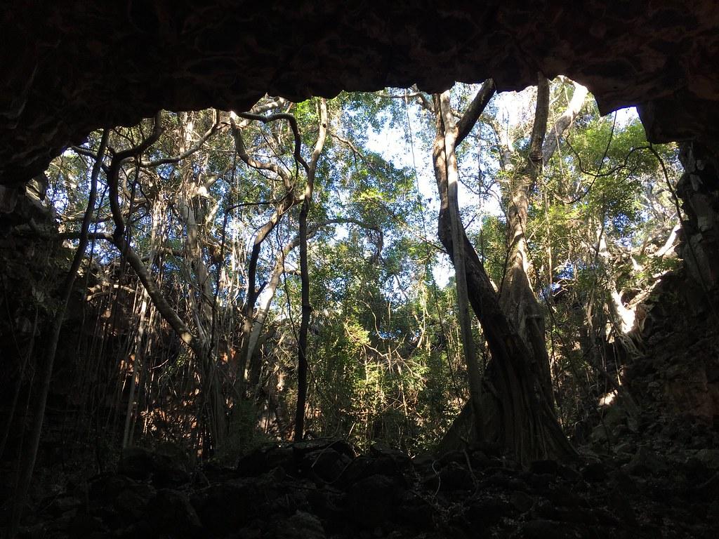 Undara Lava Tubes &National Park