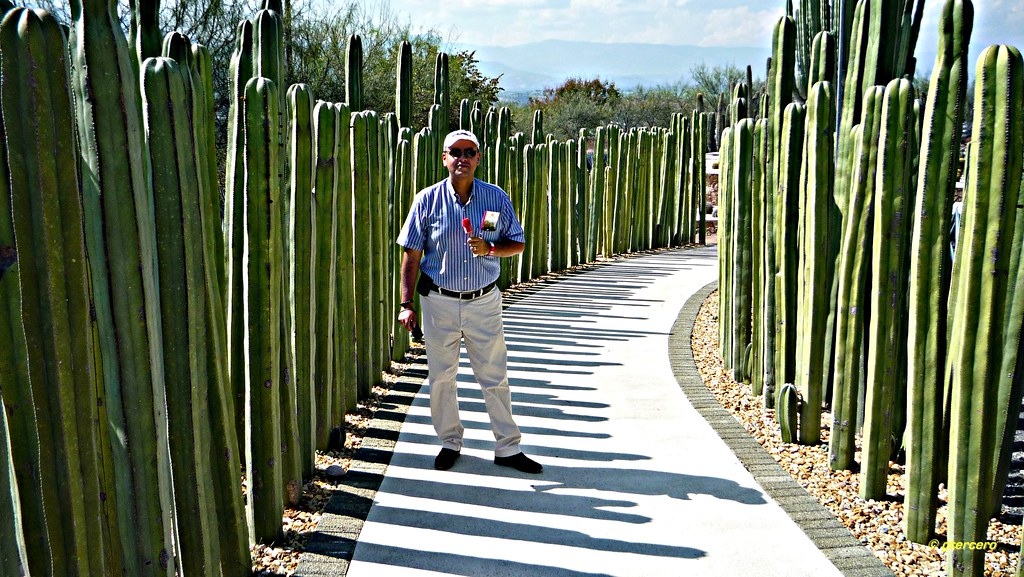 Mi hijo José Manuel en el Jardín de Cactus, Jardines de Mé… | Flickr