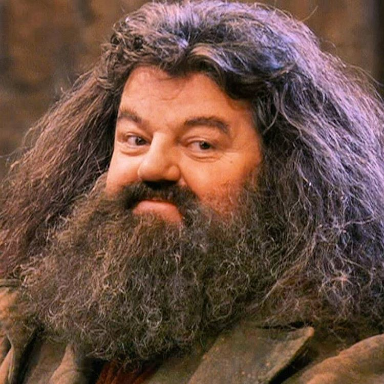 Fabulous Royal Beard Club Shout Out To Hagrid With The Magical Bea Flickr Short Hairstyles Gunalazisus