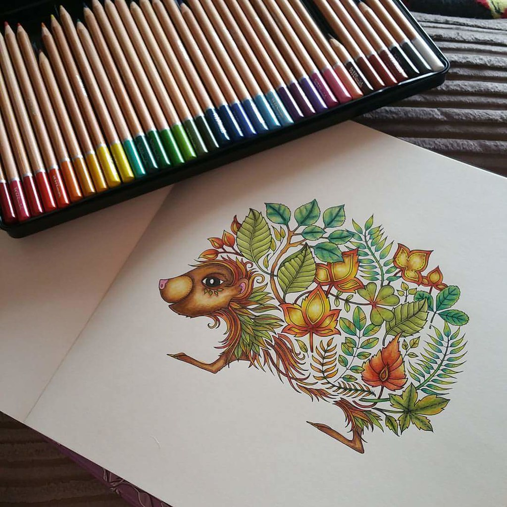 From Johanna Basfords Enchanted Forest Colouring Book