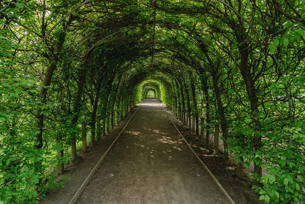 snug harbor cultural center botanical garden staten island new york - Staten Island Botanical Garden