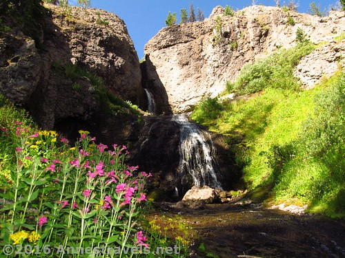 Dundee Falls near Bonneville Pass, Wyoming