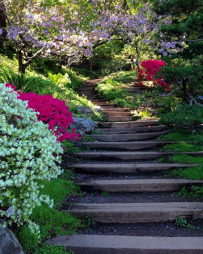 Gardens And Flowers Have A Way Of