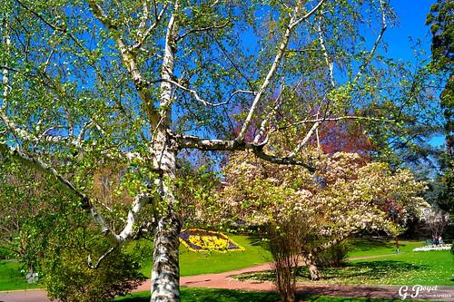Clermont ferrand jardin lecoq information importante pour flickr - Cabane jardin metallique clermont ferrand ...