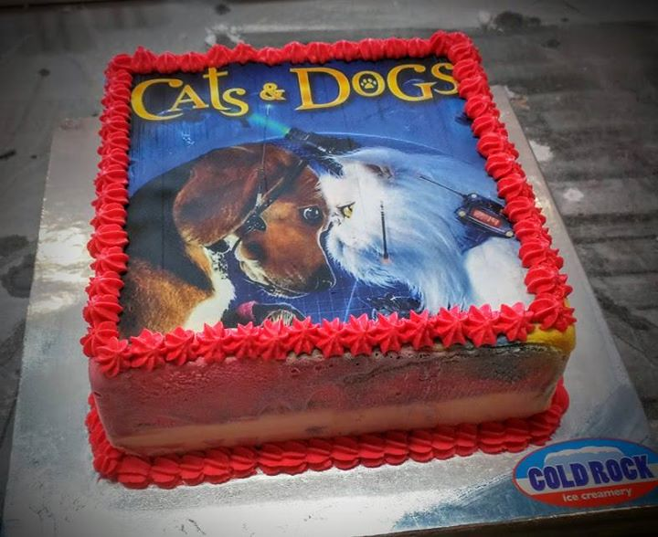 Birthday Ice Cream Cake With Edible Print Cats Dogs Flickr