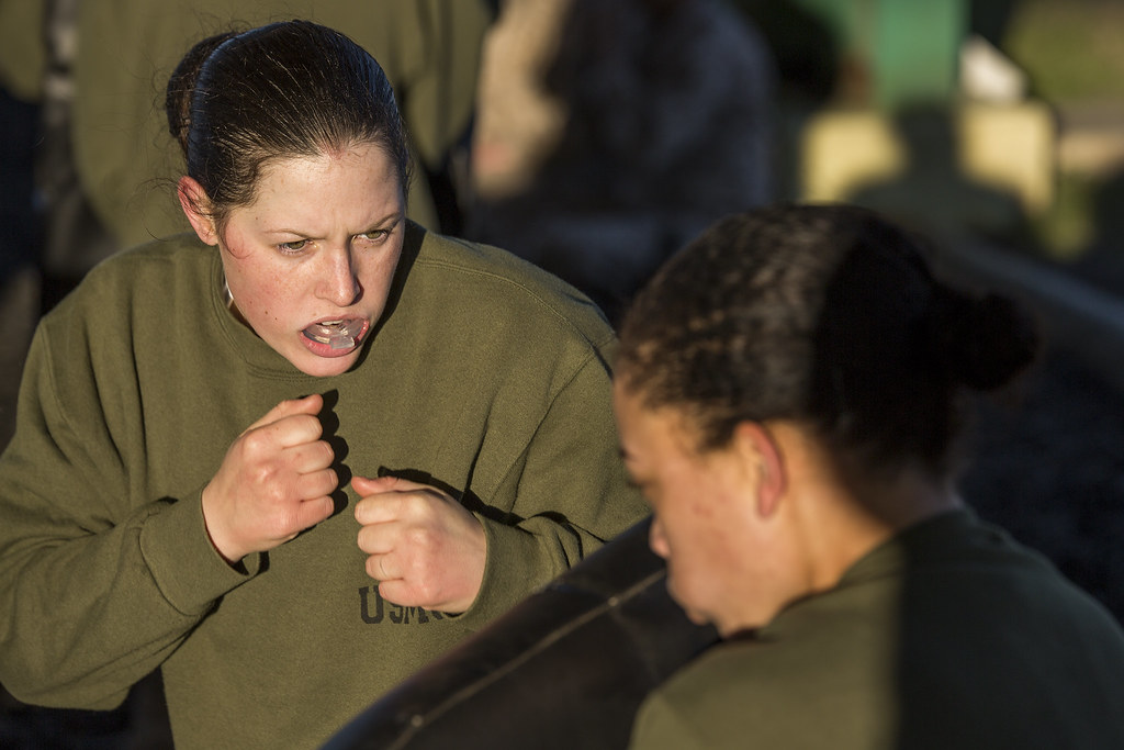 Papa Company Marine Corps Martial Arts Program Feb 18 Flickr