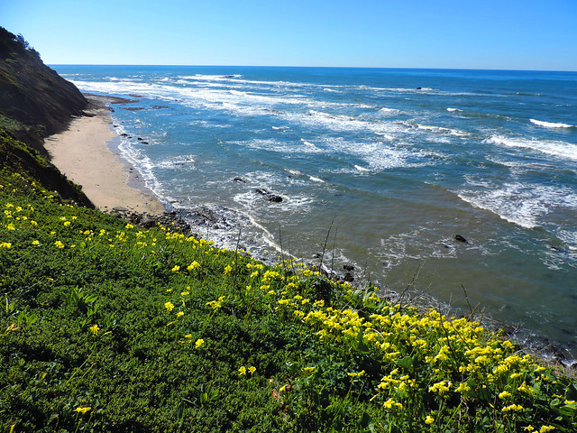 Best Early Spring Hikes In California: Half Moon Bay, California, USA