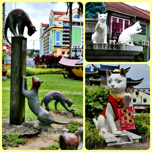 Cat city!