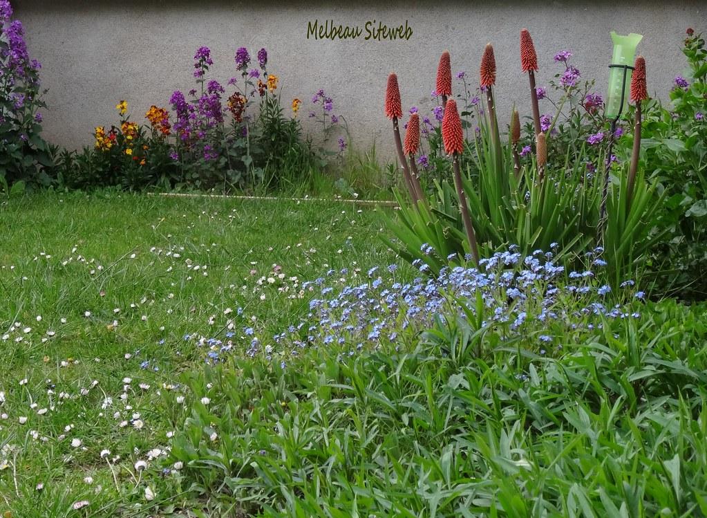 Ombre et lumière & fleurs du jardin   Melbeau Siteweb   Flickr