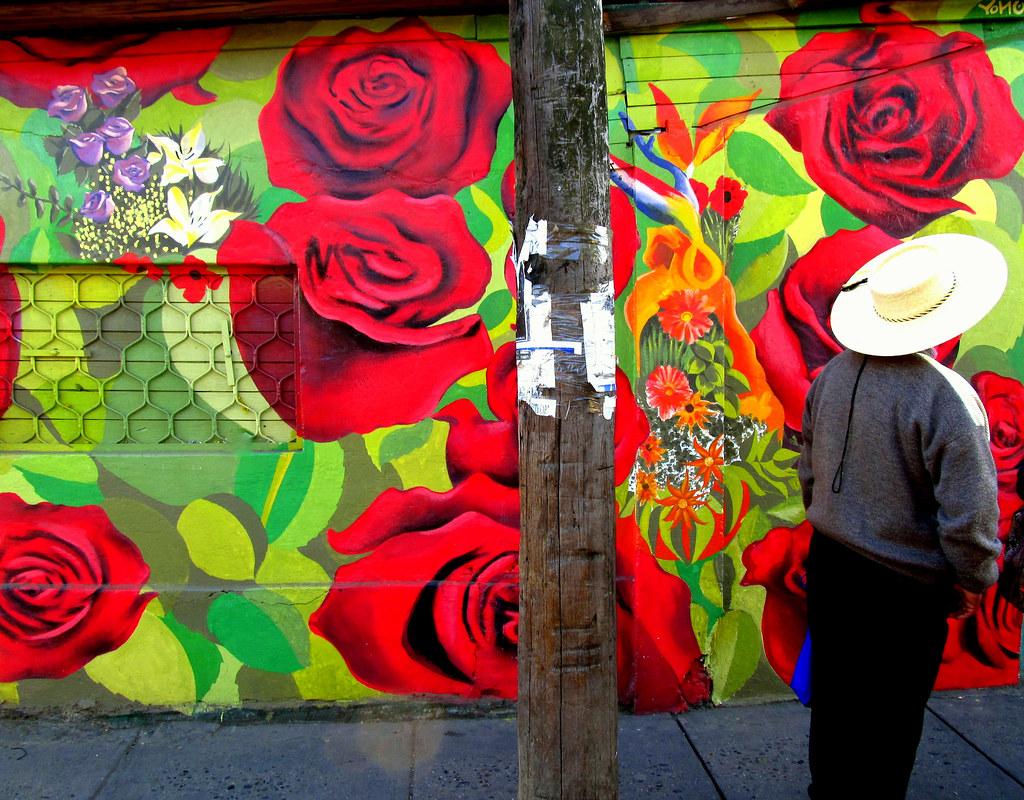 Rosas Rojas Y Azules Linares Chile 2016 Yono Flickr