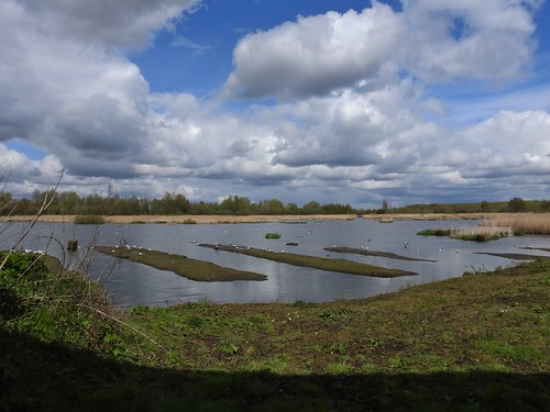 Woolston Eyes Nature Reserve in Cheshire, England - April 2016