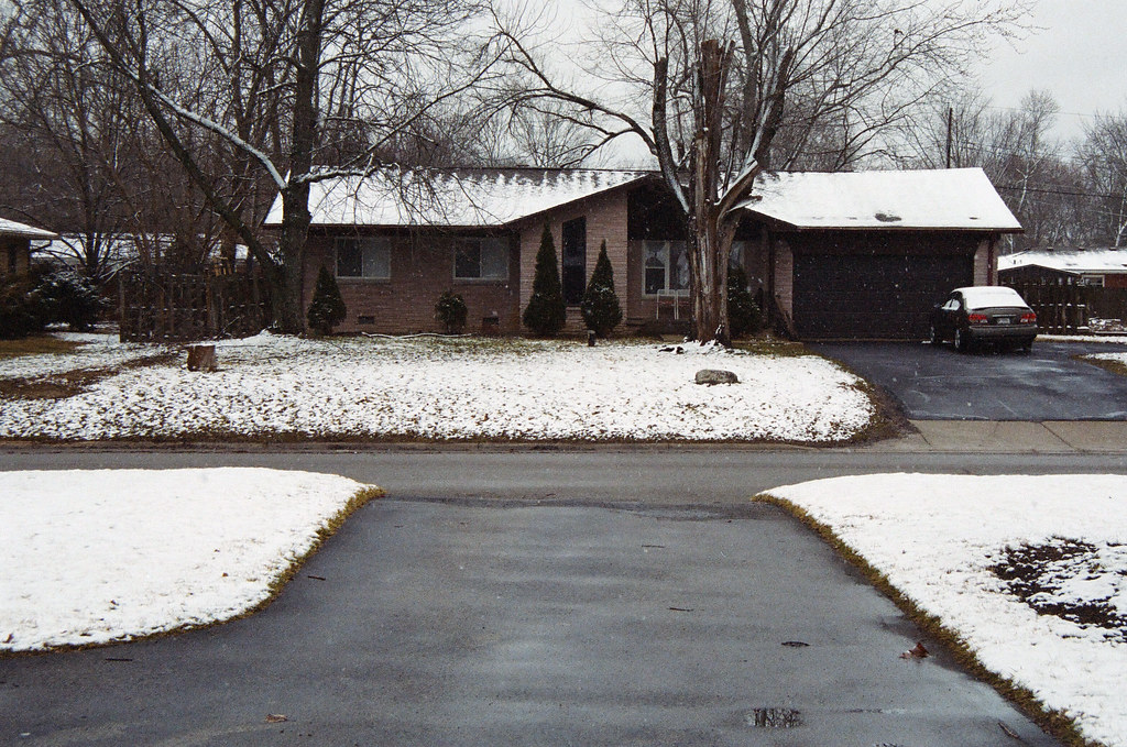 Mild winter in old suburbia