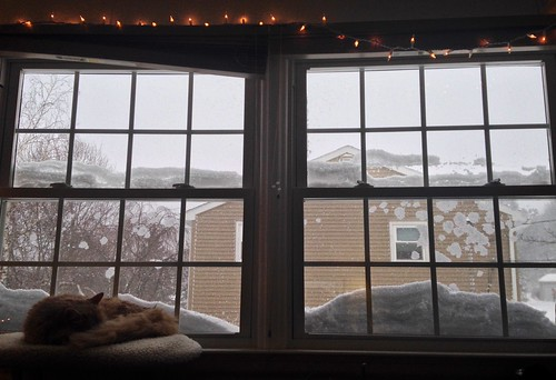 The snow isn't actually up to the second story, but plenty has been blown up here. | by Krista76