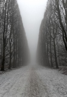 Fog and snow | by marcus-e