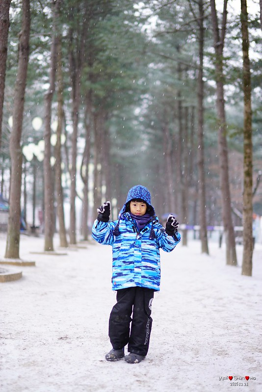 Snowing in Nami Island