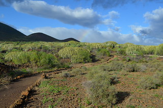 Tenerife Coastal Paths | by tenerife holidays