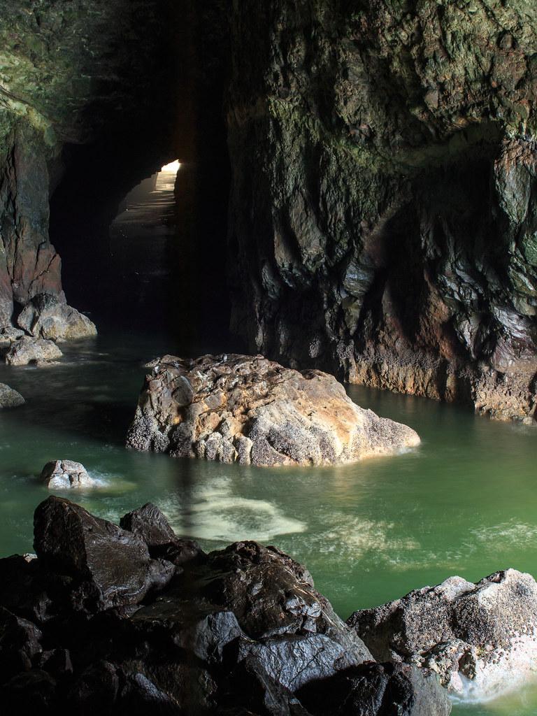 In der Höhle der Seelöwen