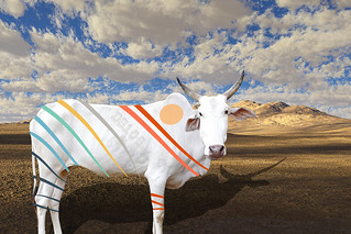 The DS106 Coloured Cow | by iamtalkytina